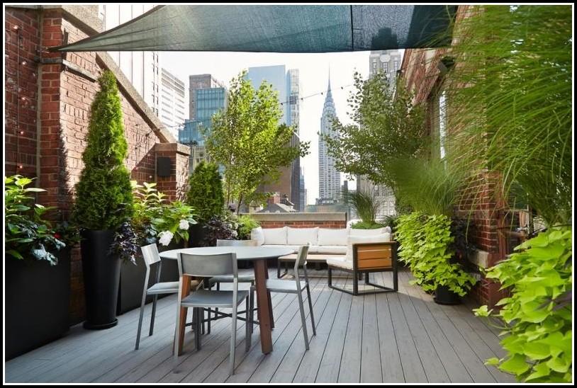 Balkon Sichtschutz Bambus Pflanzen