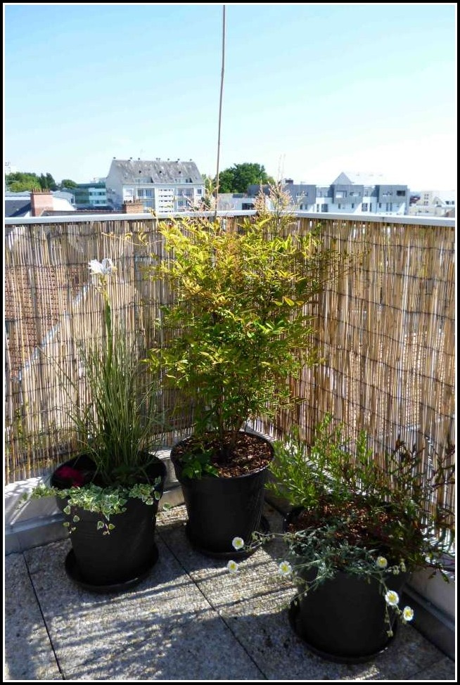 Balkon Sichtschutz Bambus Pvc
