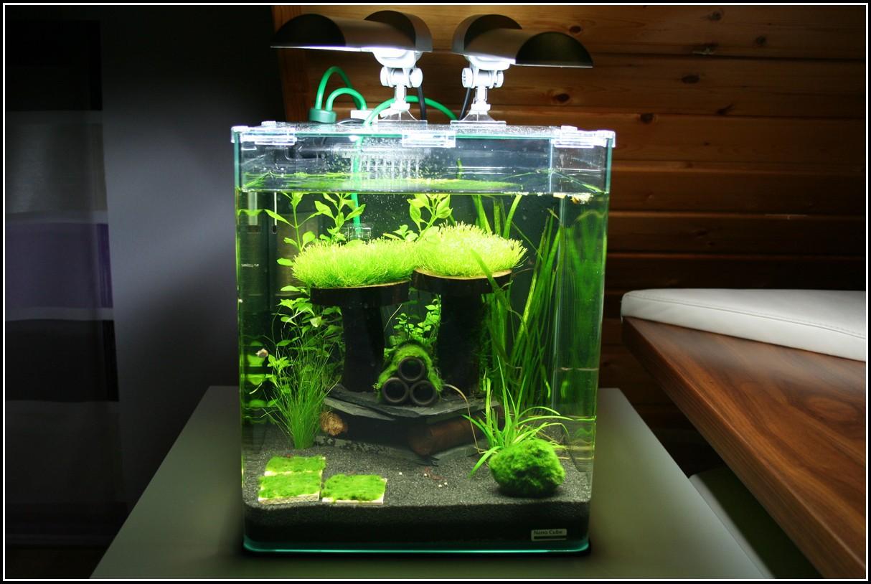 Beleuchtung Für Nano Aquarium