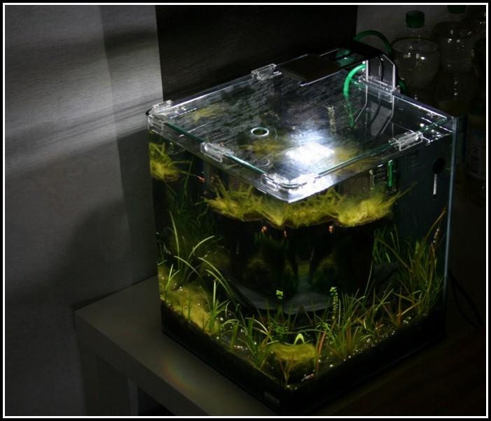 Beleuchtung Nano Aquarien