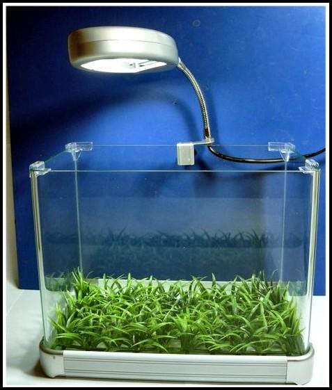 Beleuchtung Nano Aquarium