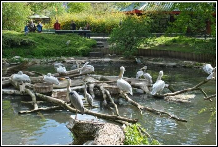 Berlin Zoologischer Garten Eintritt