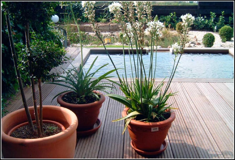 Bg Für Garten Und Landschaftsbau