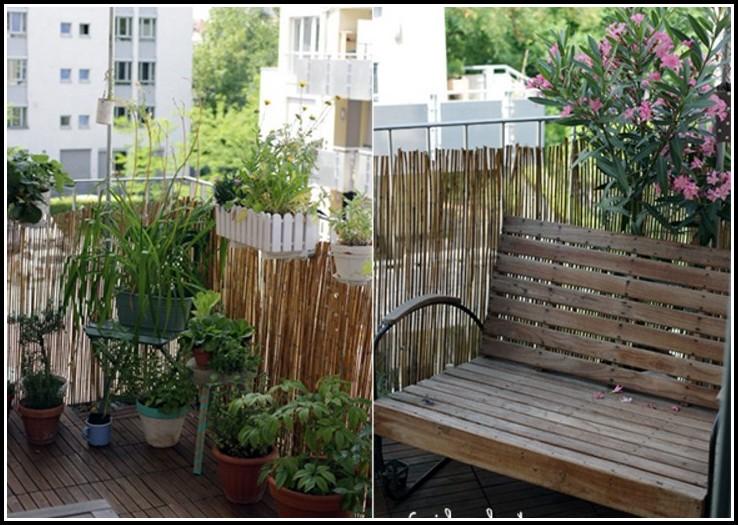 Bienen Auf Dem Balkon Erlaubt