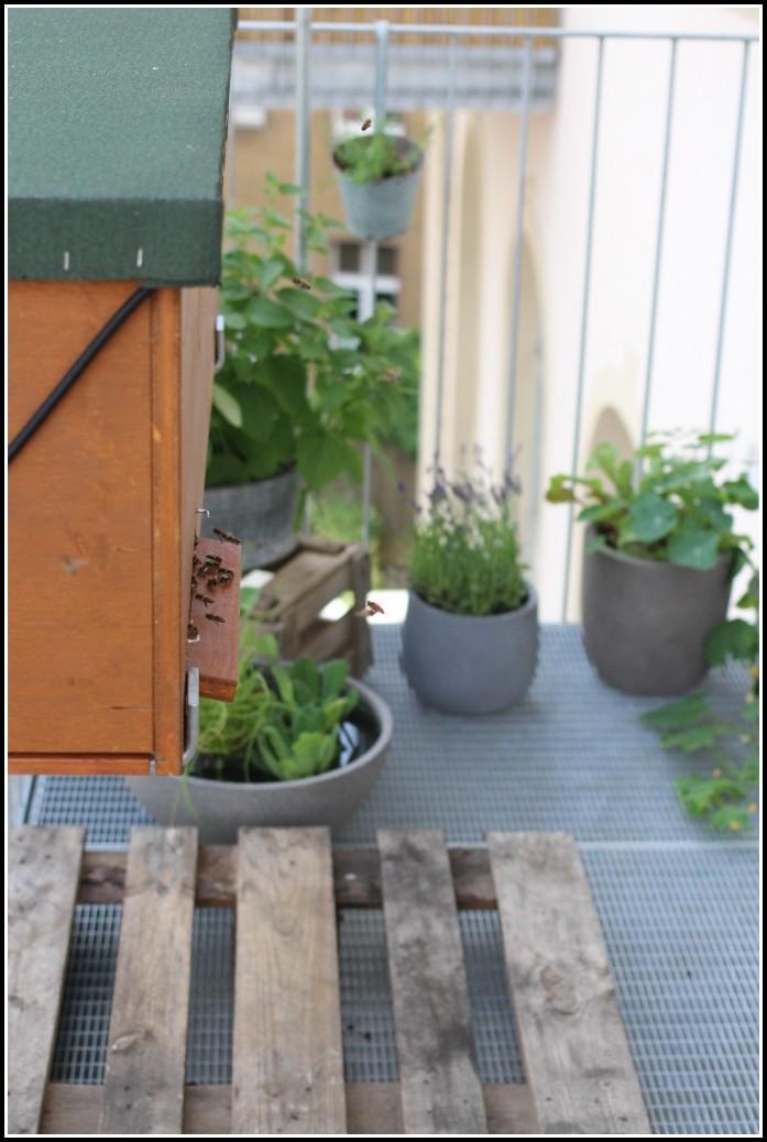 Bienen Auf Dem Balkon Halten