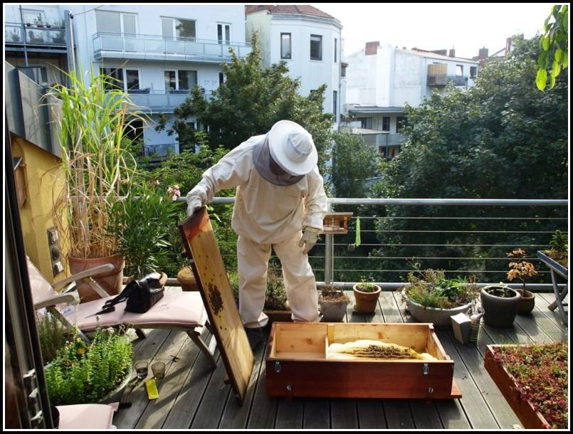 Bienen Auf Dem Balkon Züchten
