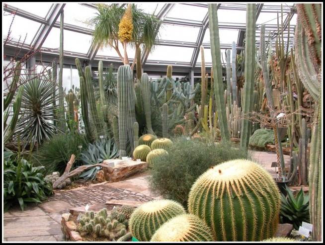 Botanischer Garten Berlin Tripadvisor