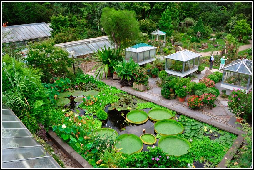 Botanischer Garten Berlin Veranstaltung 2013
