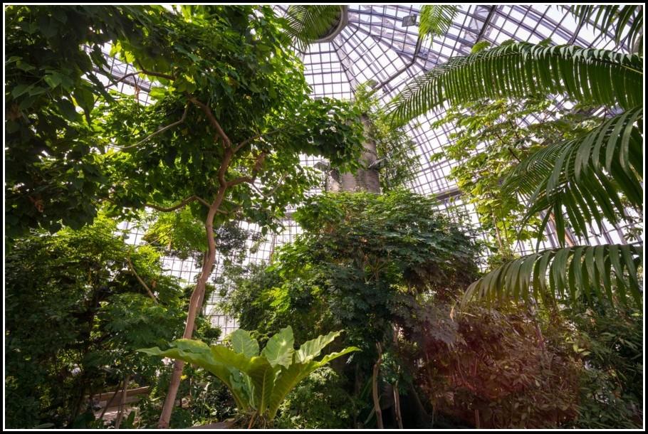 Botanischer Garten Berlin Veranstaltungen 2014