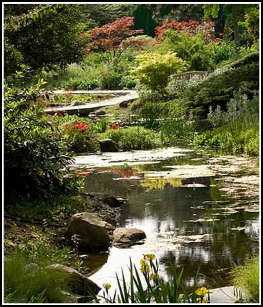 Botanischer Garten Hamburg Eintritt