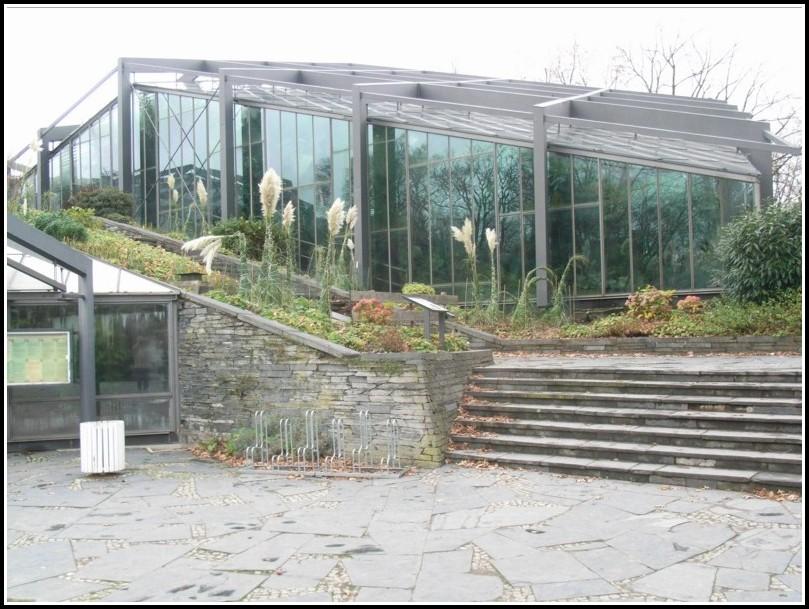 Botanischer Garten Hamburg Planten Und Blomen