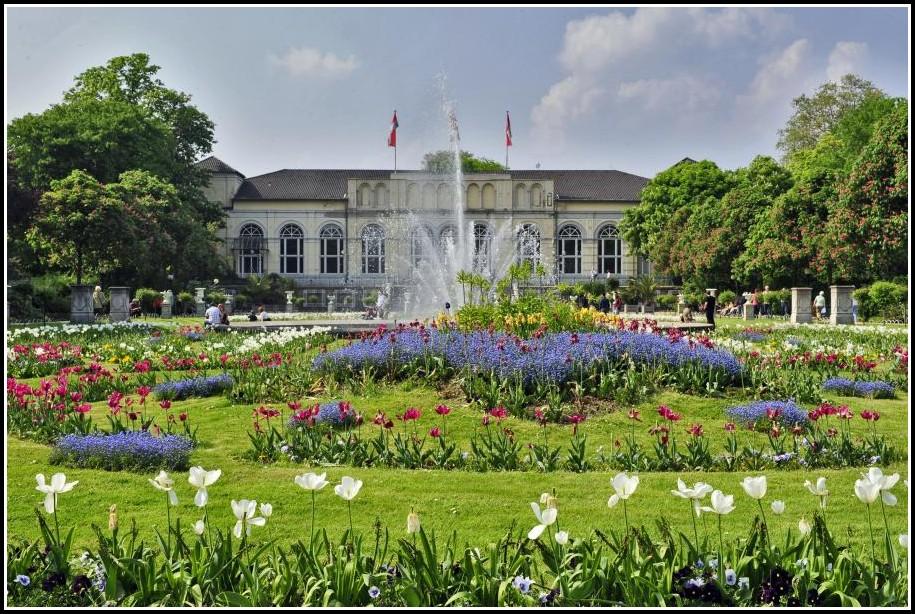 Botanischer Garten Köln Hochzeit
