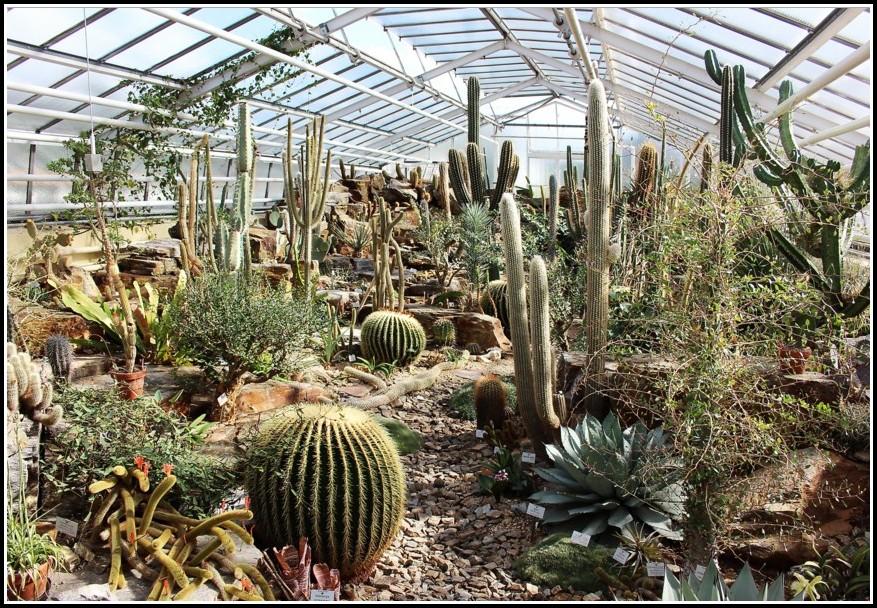Botanischer Garten München Anfahrt