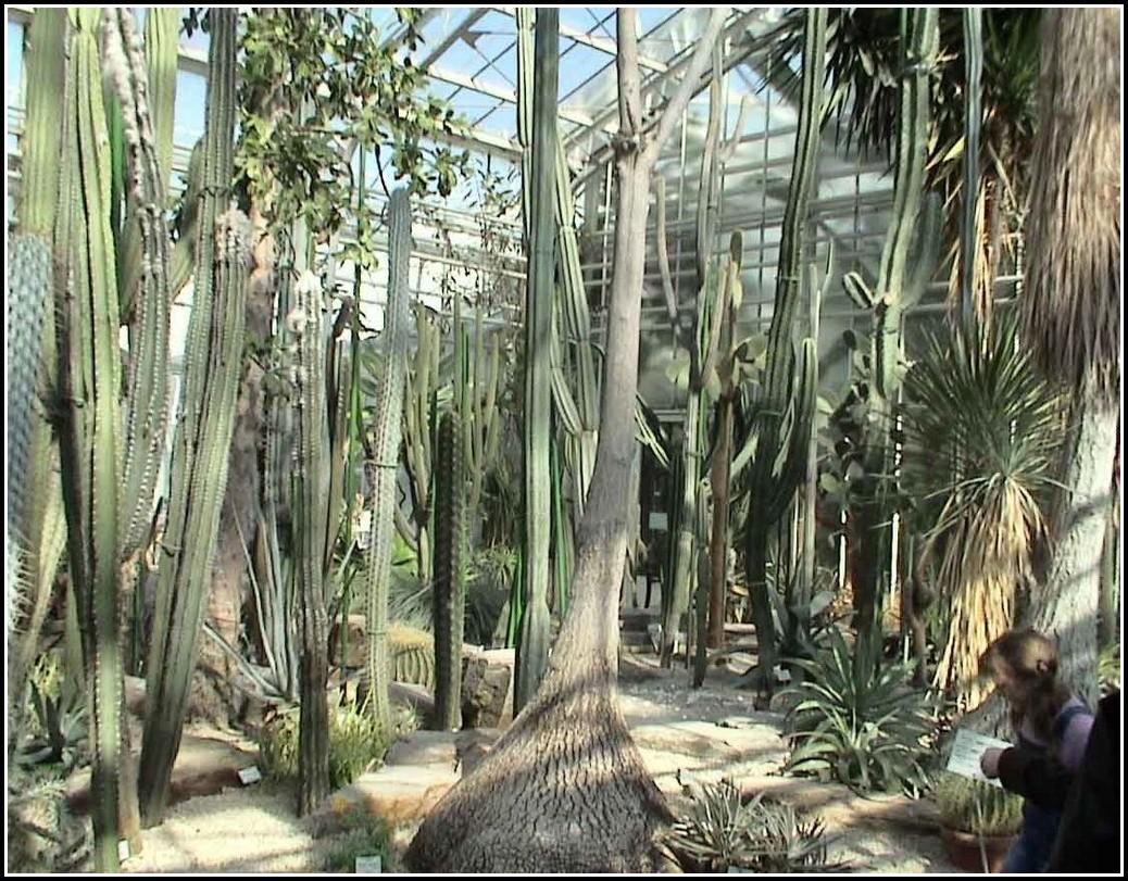 Botanischer Garten München Eintritt