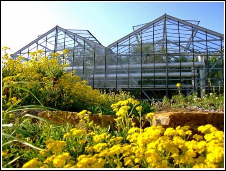 Botanischer Garten Osnabrück Tropenhaus
