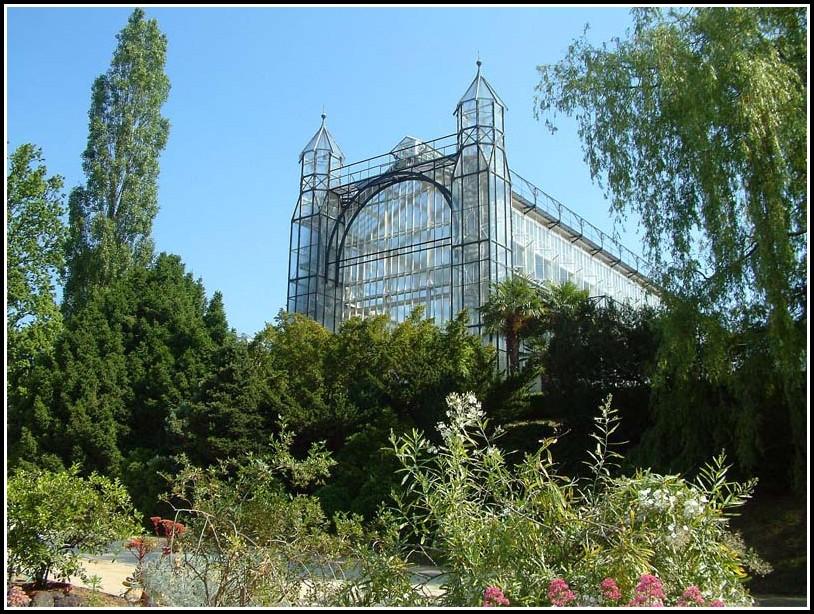 Botanischer Garten Potsdam Orchideenausstellung