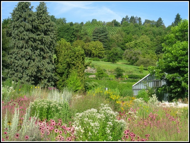 Botanischer Garten Würzburg öffnungszeiten