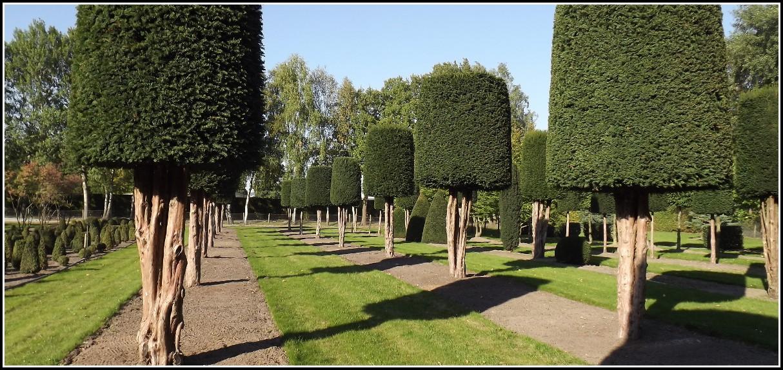 Boymann Garten Und Landschaftsbau Gmbh