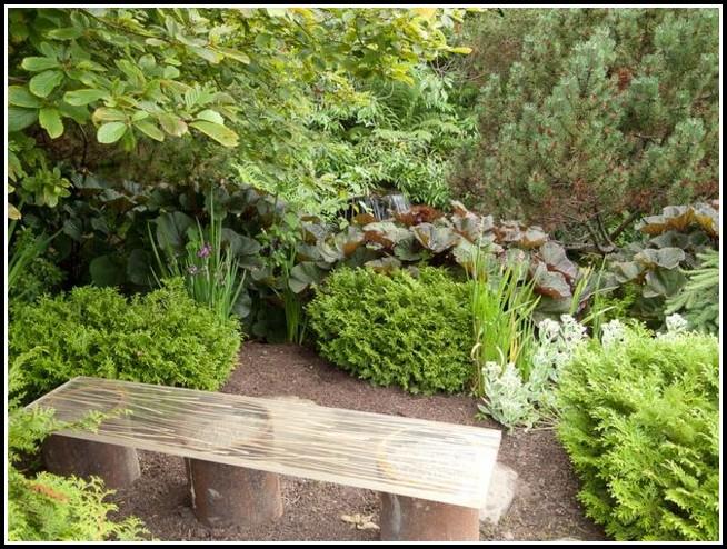 Drainage Für Pflanzen Im Garten