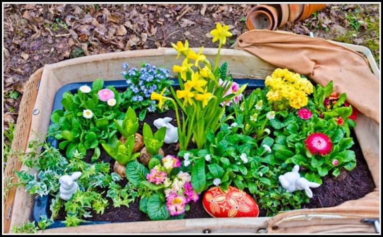 Drainage Im Garten Richtig Verlegen Video