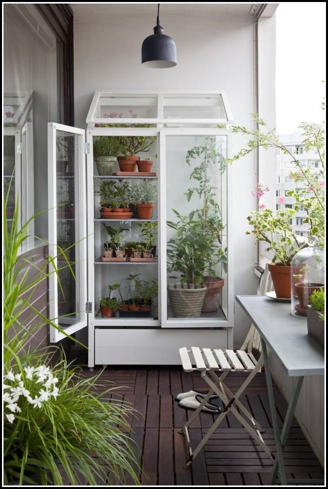 Erdbeeren Pflanzen Auf Balkon