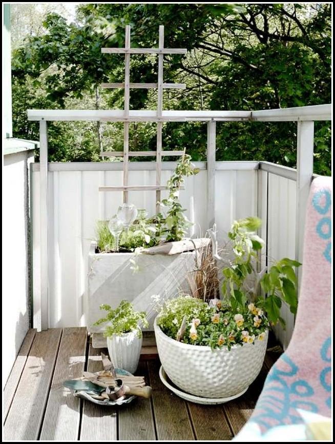 Erdbeeren Pflanzen Balkon Erde