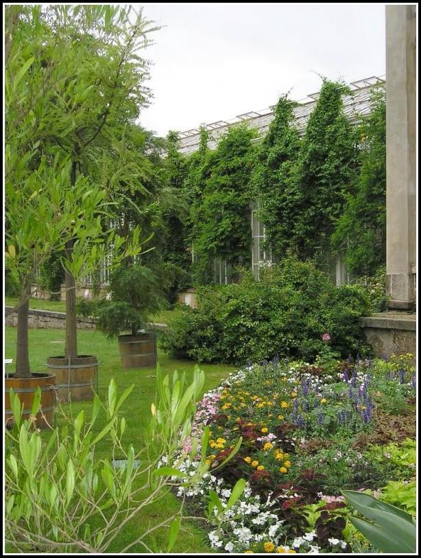 Gärtner Garten Und Landschaftsbau Ausbildungsvergütung
