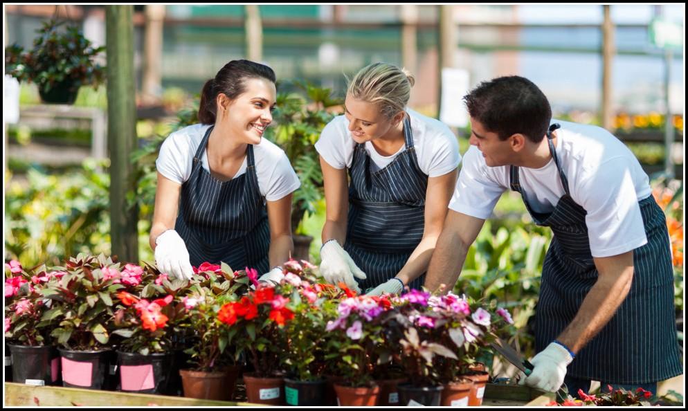 Gärtner Garten Und Landschaftsbau Gehalt Ausbildung