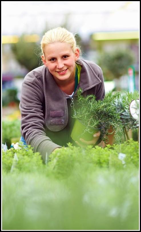 Garten Und Landschaftsarchitektur Studium