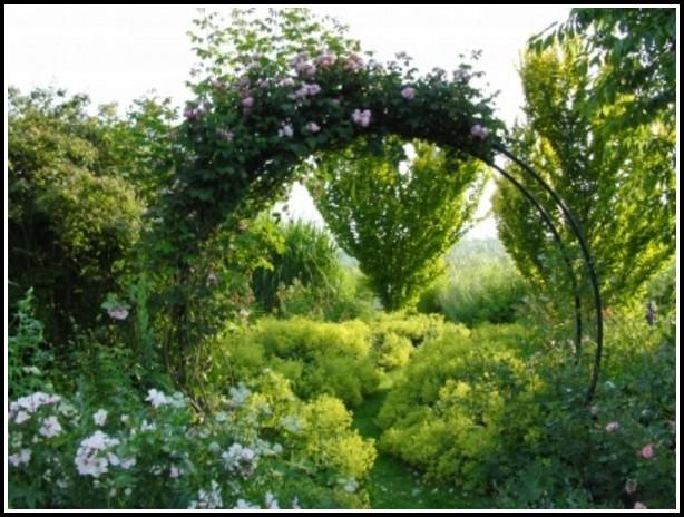 Garten Und Landschaftsbauer Siegen