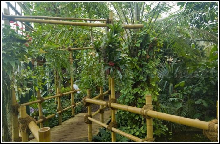 Größter Botanischer Garten Nrw