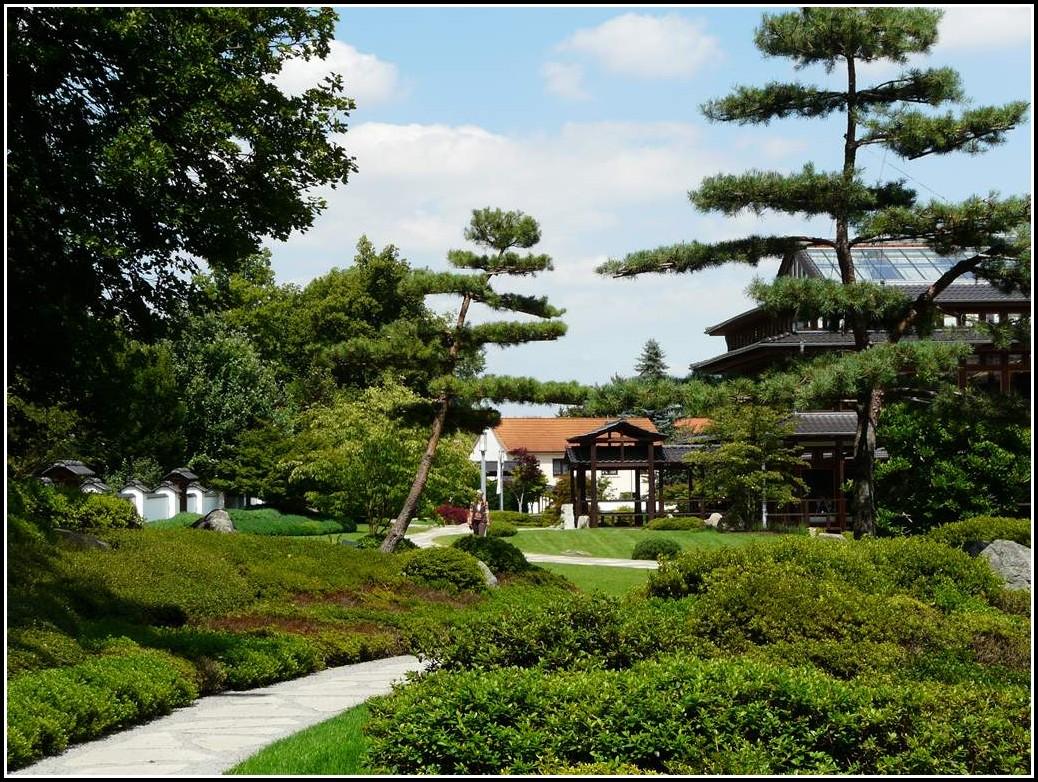 Japanischer Garten Bad Langensalza Kirschblüte