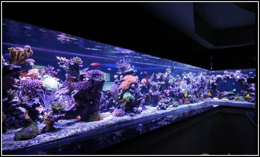 Juwel Aquarium Beleuchtung Led
