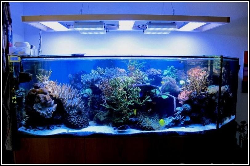 Juwel Aquarium Beleuchtung Umbauen