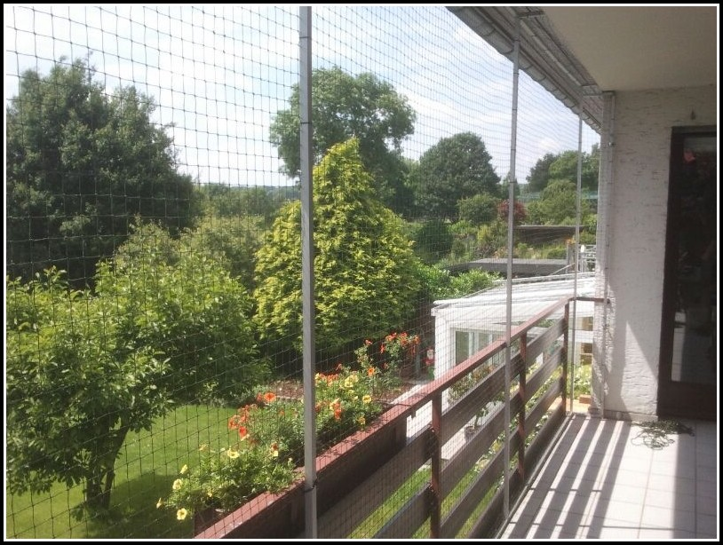 Katzennetz Für Den Balkon