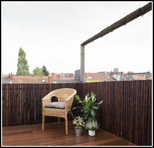 Kleiner Bambus Für Den Balkon