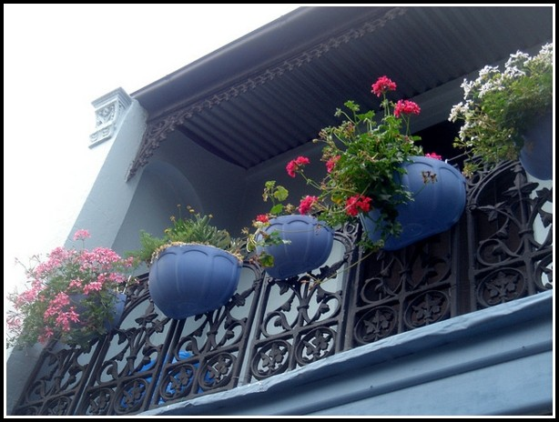 Kräuter Anbauen Balkon