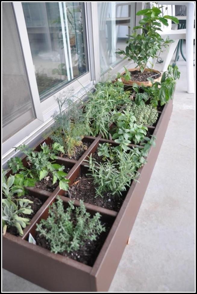 Kräuter Balkon Pflanzen Anleitung