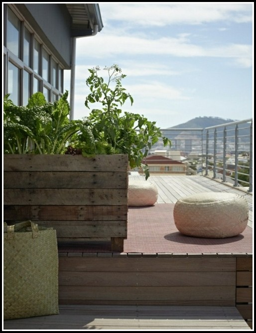 Kräuter Pflanzen Auf Balkon