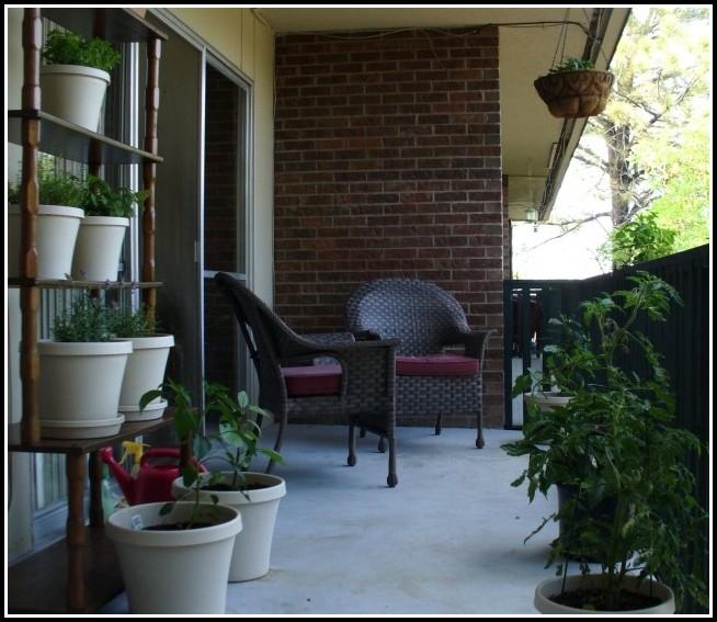Kräuter Pflanzen Balkon Wann