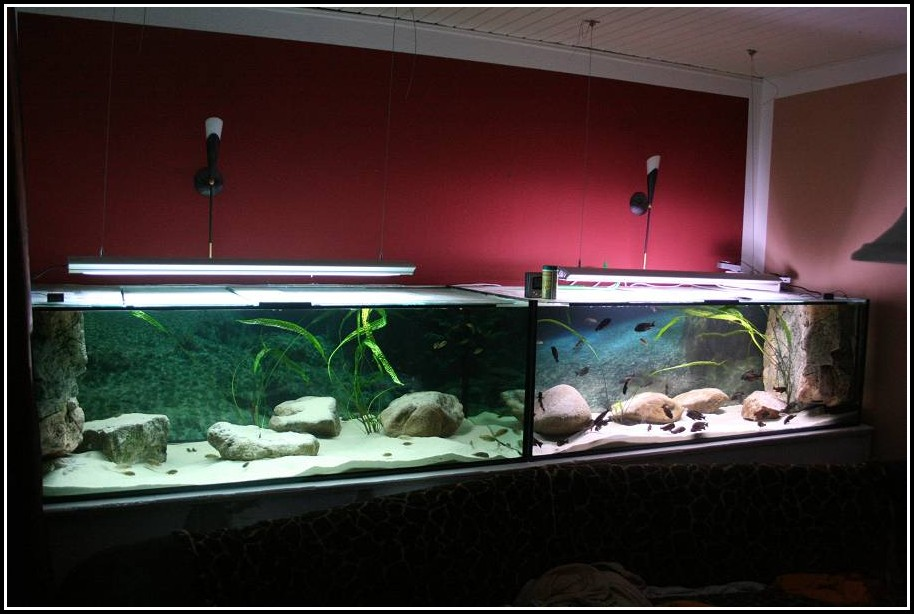 Led Aquarien Beleuchtung Selber Bauen