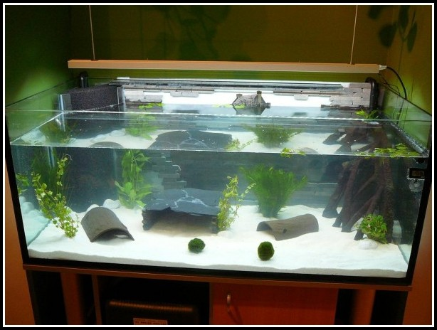 Led Beleuchtung Aquarium Selber Bauen