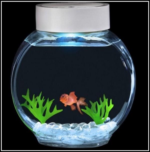 Led Beleuchtung Fr Aquarium