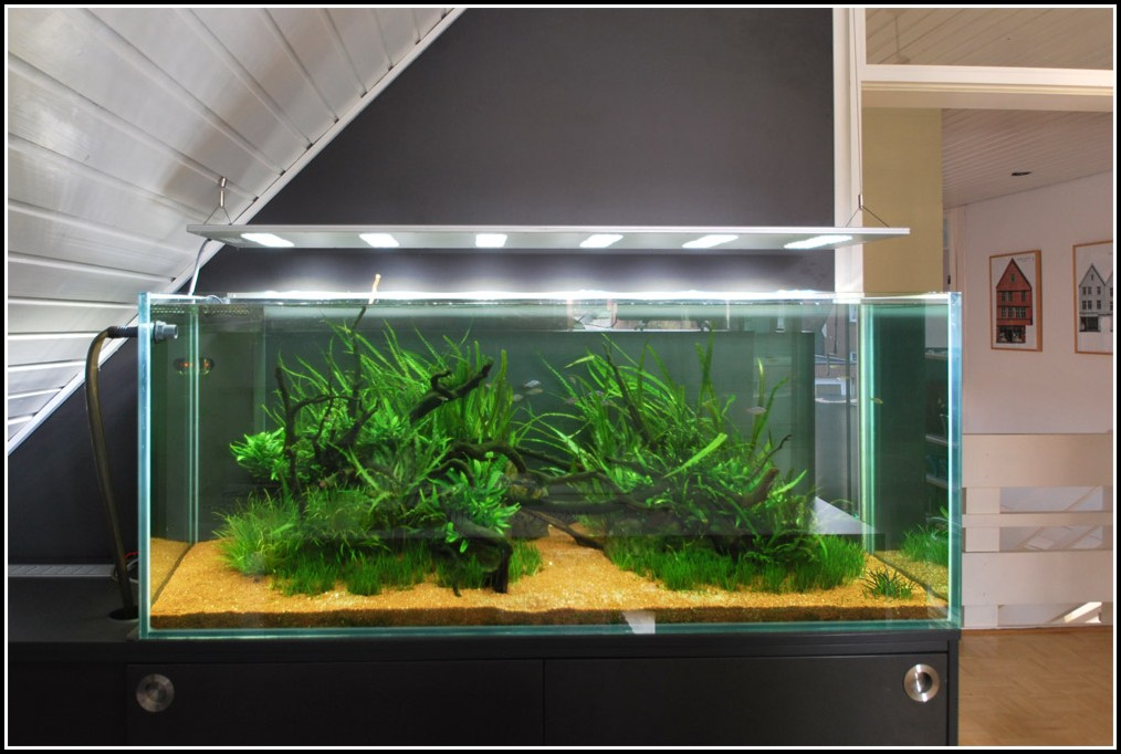 Led Beleuchtung Frs Aquarium