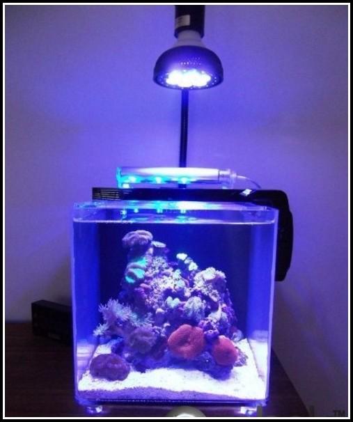 Led Beleuchtung Nano Meerwasser Aquarium