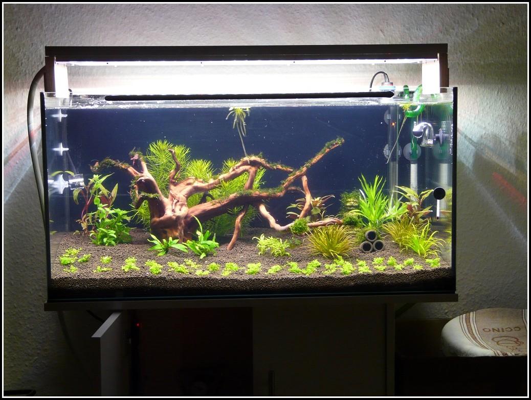 Led Beleuchtung Selber Bauen Anleitung Aquarium