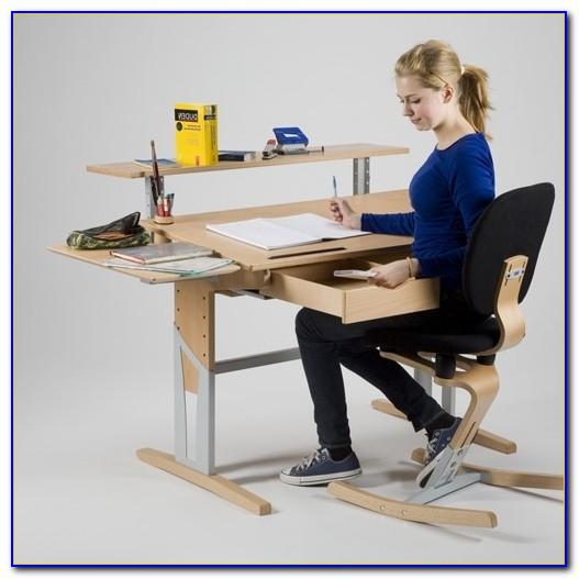 Moizi Schreibtischstuhl Test