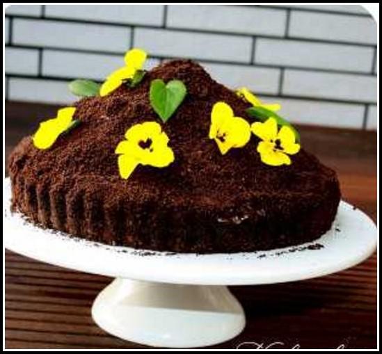 Oreo Kuchen Selbst Backen
