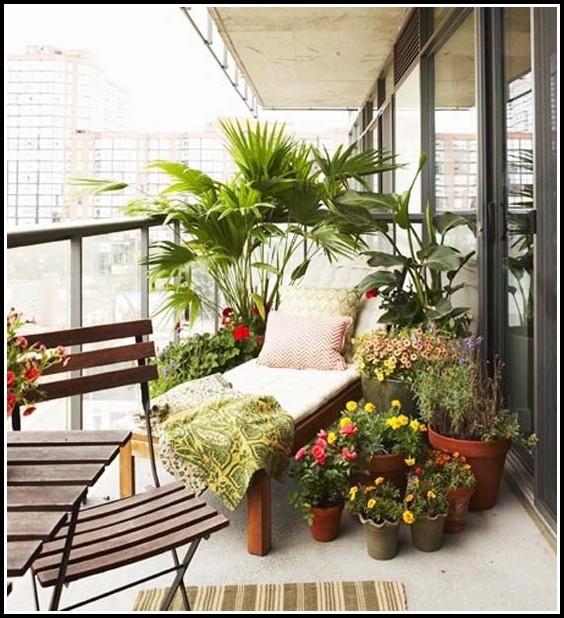 Pflanzen Für Sichtschutz Balkon