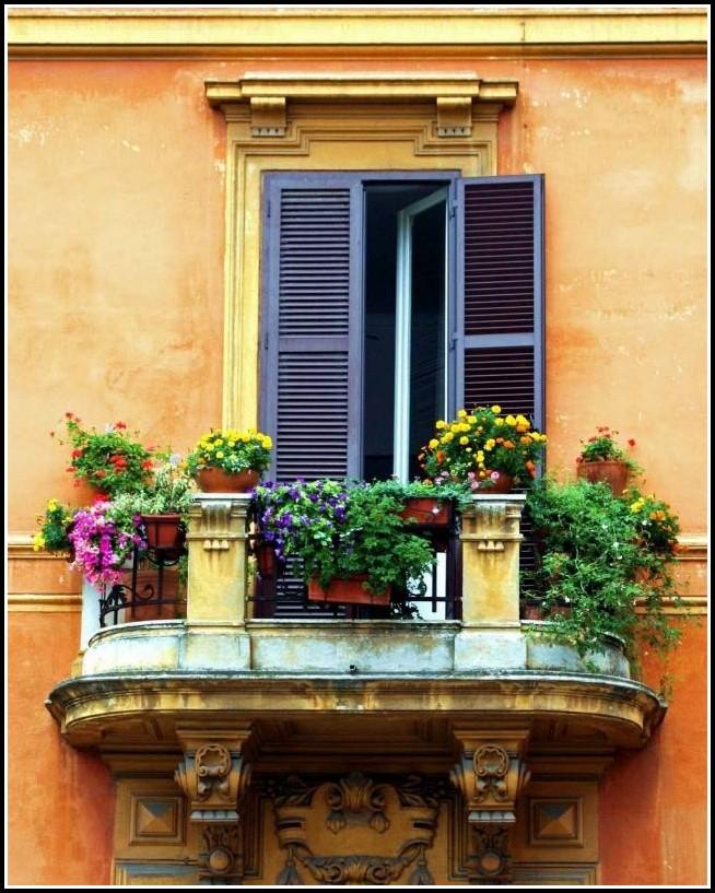 Pflegeleichte Pflanzen Für Den Balkon